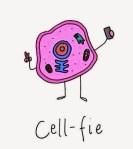 Cell-fie