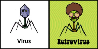 Retrovirus