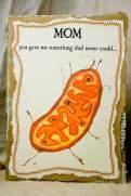 mitochondrio