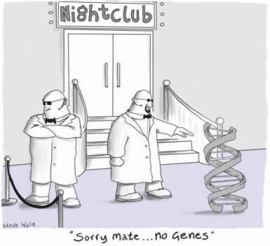no genes