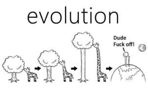 epic darwin