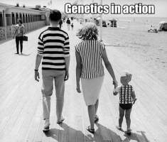genetics everywhere