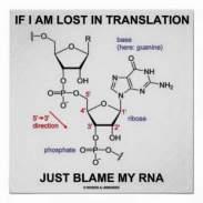 translation