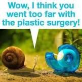 snailery